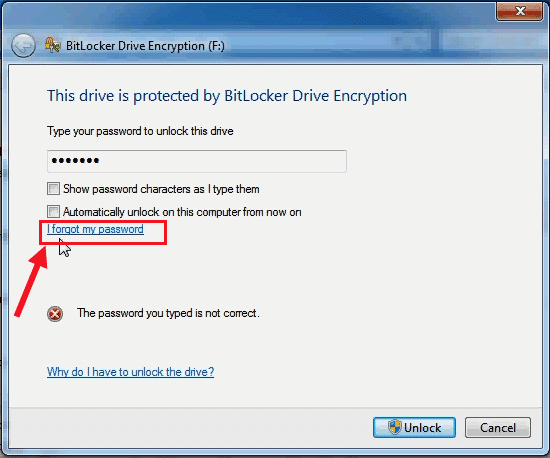If Forgot Hard Disk BitLocker Password What to Do