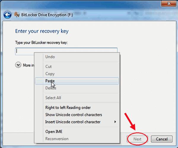 If Forgot Hard Disk BitLocker Password What to Do