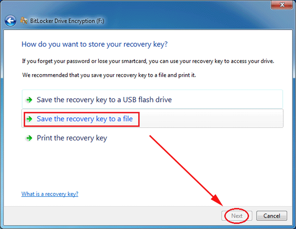 save the recover key to a file
