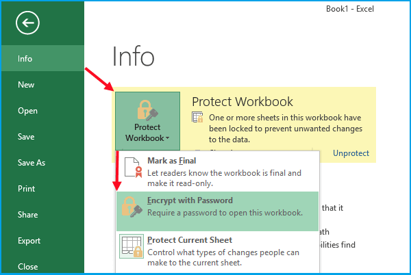 encrypt Excel file 2013 with password
